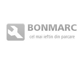 Absorbant Bara Sp. Log. Facelift Dacia 8200651353 63735